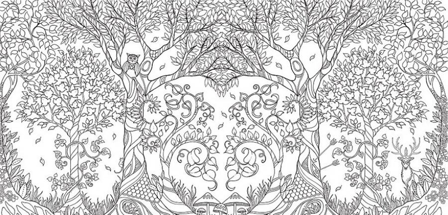 Сова в лесу Раскраски для медитации