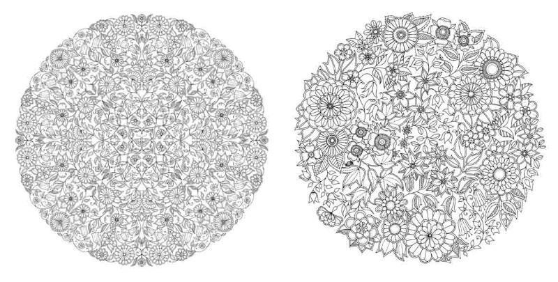 Цветы в кругах Раскраски для взрослых скачать