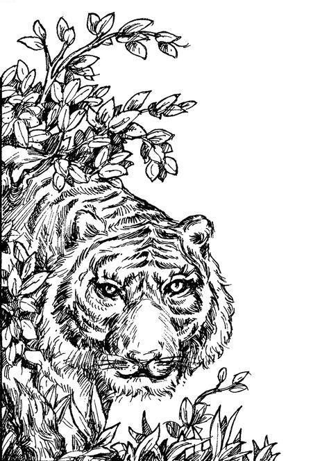 Тигр возле ветки Раскраски для медитации