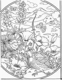 Птица на клумбе с цветами Антистрессовые раскраски