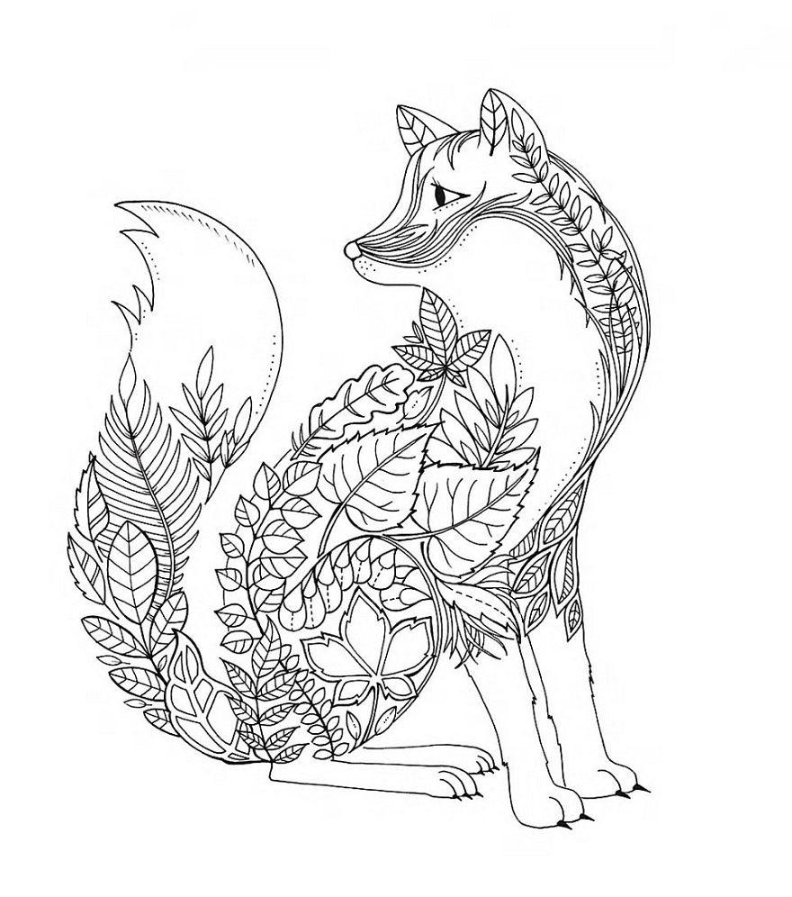Лисичка Скачать сложные раскраски